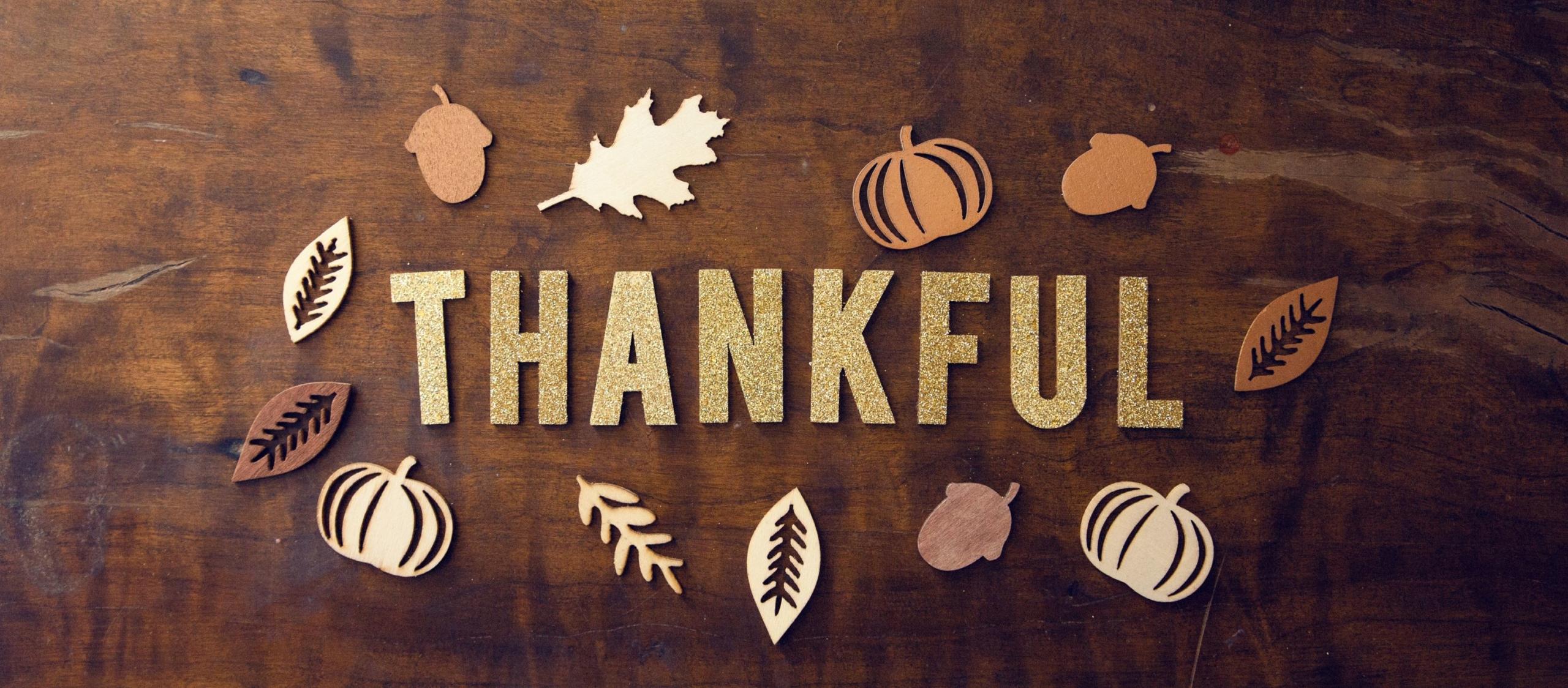 humanworks Gratitude Series